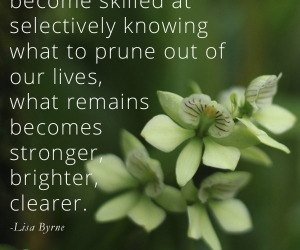 Organize, or Prune for Growth